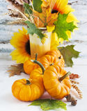 Arrangement from Pumpkin and Flowers Royalty Free Stock Photography