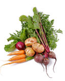 Arrangement of Raw Organic Vegetables. Arrangement of Raw Organic Farmer's Potato, Carrot, Red Onion and Beet isolated on white background Royalty Free Stock Photography