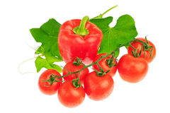 Arrangement of red tomatoes, peppers. Stock Photos
