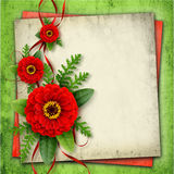 Arrangement with red zinnia flowers and silk ribbons Stock Photos