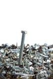 Arrangement of screws Stock Image