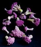 Fresh Purple Cauliflower. Arrangement of Small Fresh Raw Purple Sprouts of Cauliflower with Leafs isolated on Black background Royalty Free Stock Photos