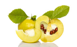 Arrangement of small quince Royalty Free Stock Image