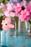 Arrangement of Spring flowers Stock Photos