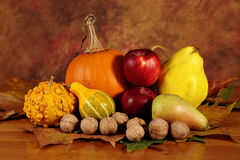 Arrangement of squashes and fruits with dried leaves Stock Photography