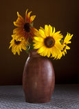 Arrangement of sunflowers. Stock Image