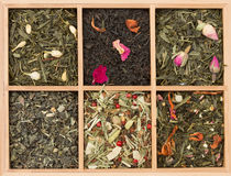 Arrangement of tea Royalty Free Stock Photo