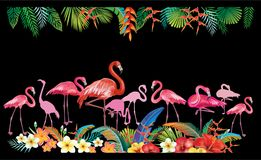 Arrangement from tropical flowers and Flamingoes Stock Image