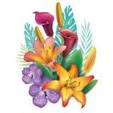 Arrangement from tropical flowers. Vector arrangement from tropical flowers Stock Photos