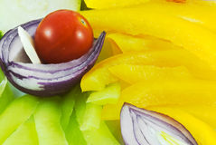 Arrangement of the vegetable. Arrangement of the various vegetable Stock Image