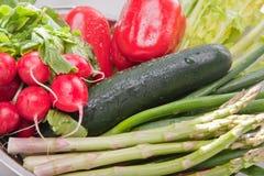 Arrangement of Vegetables Royalty Free Stock Image