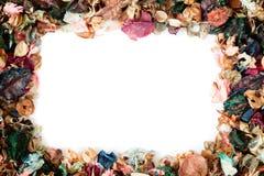 Arrangements de fleur aromatique sèche en tant que cadre carré plus de Photo libre de droits