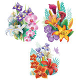 Arrangements from tropical flowers Stock Photography