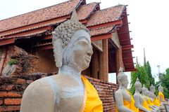 Arrangera i rak linje buddha Arkivfoton