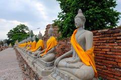 Arrangera i rak linje Buddhastaty Arkivbilder