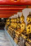 Arrangera i rak linje guld- buddha statyWat Pho tempel bangkok Thailand Royaltyfri Bild