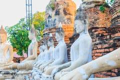 Arrangera i rak linje sittande Buddhastatyer med forntida fördärvar av templet på waen Royaltyfri Bild