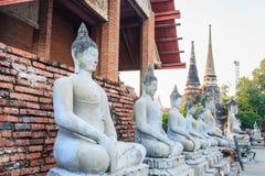 Arrangera i rak linje sittande Buddhastatyer med forntida fördärvar av templet på waen Royaltyfria Foton