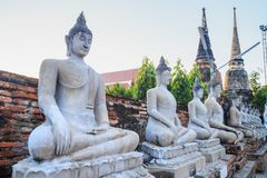Arrangera i rak linje sittande Buddhastatyer med forntida fördärvar av templet på waen Arkivbild