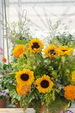 Arrangez un bouquet de beau tournesol image stock
