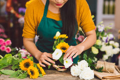 Arranging flowers Stock Image