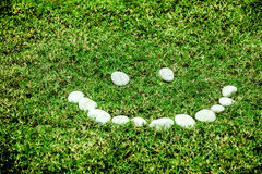 Arranging white stone on the green grass in smile concept for ec Stock Photo