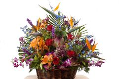 Arrangment exotique de fleurs Photo stock
