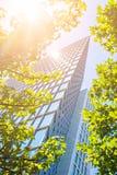 Arranha-céus de vidro moderno com folhas Fotografia de Stock