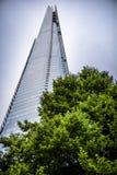 Arranha-céus e árvore de Londres imagem de stock royalty free