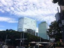 Arranha-céus frescos em Shinjuku Fotografia de Stock Royalty Free