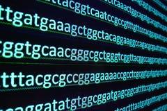 Arranjar em sequência do genoma no laboratório fotografia de stock