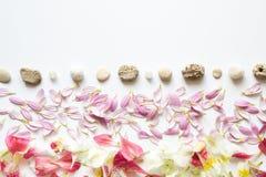Arranjo criativo com pedras e pétalas Foto de Stock