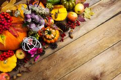 Arranjo da ação de graças com trevo, maçãs, abóboras, termas da cópia Fotos de Stock