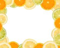 Arranjo da fatia da fruta Imagens de Stock Royalty Free