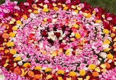 arranjo das flores e das pétalas do centro e formação de um círculo maior foto de stock