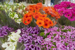 Arranjo das flores em uma tenda do mercado Fotografia de Stock