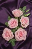 Arranjo das rosas Imagens de Stock
