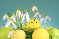 Arranjo de Easter Imagens de Stock Royalty Free