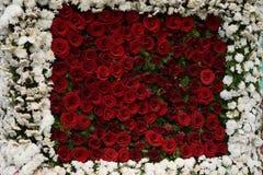arranjo de flor Fotos de Stock Royalty Free