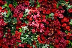 Arranjo de flor misturado Flor colorida do ramalhete do mixe Fotografia de Stock