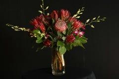 Arranjo de flor tropical Fotos de Stock