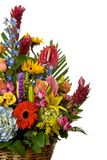 Arranjo de flores   Foto de Stock Royalty Free