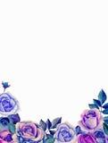 Arranjo de flores azul do Watercolour Fotos de Stock
