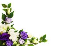 Arranjo de flores de canto fotografia de stock