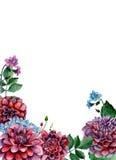 Arranjo de flores do Watercolour Fotografia de Stock