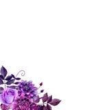 Arranjo de flores roxo da aquarela Imagens de Stock Royalty Free