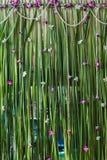 Arranjo de flores verde do contexto para o banquete de casamento Foto de Stock Royalty Free