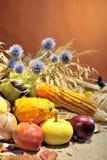 Arranjo do outono com frutas e verdura Fotos de Stock