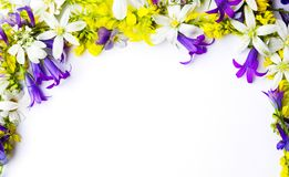 Arranjo dos Wildflowers com copyspace no fundo branco imagens de stock