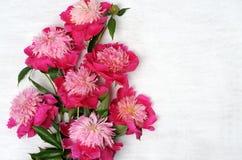 Arranjo floral das peônias Foto de Stock Royalty Free